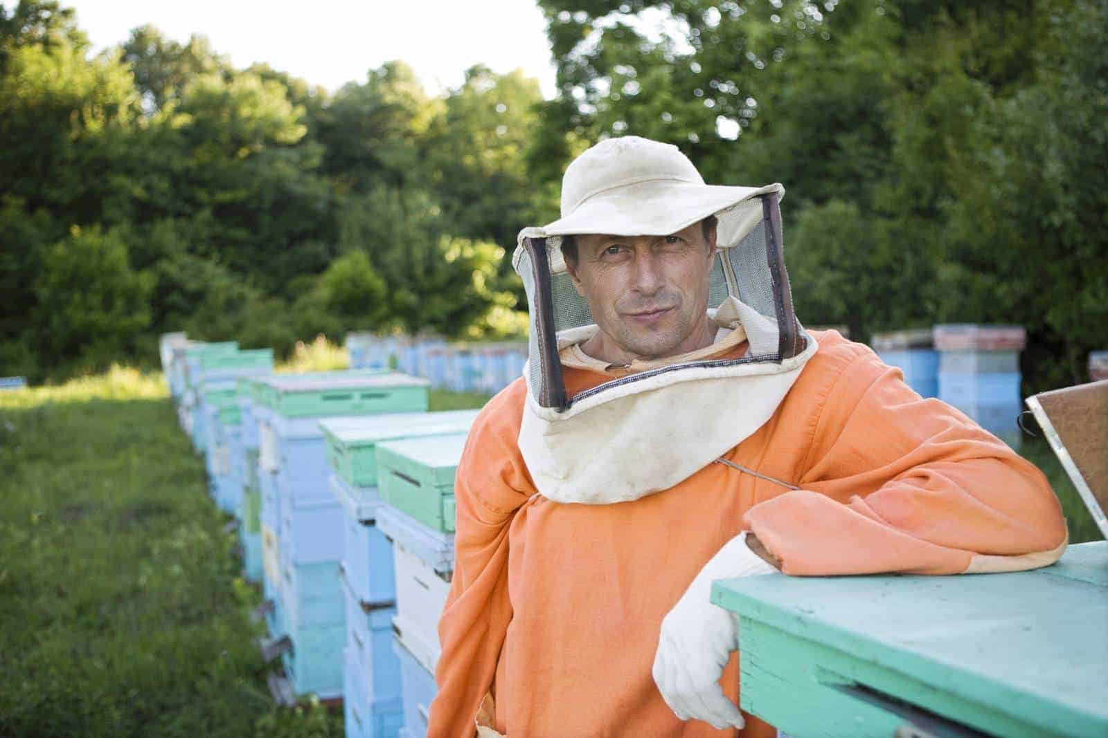 How hard work is it being a beekeeper?