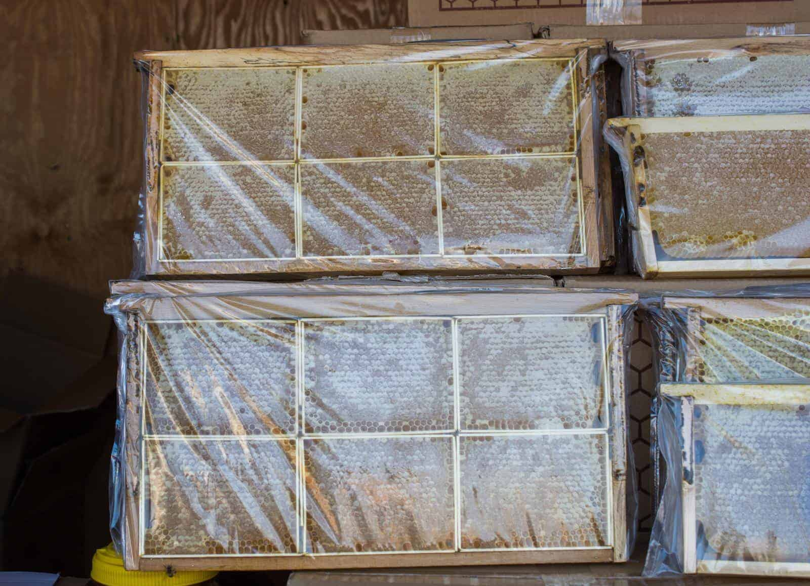 How to store frames before honey extraction?