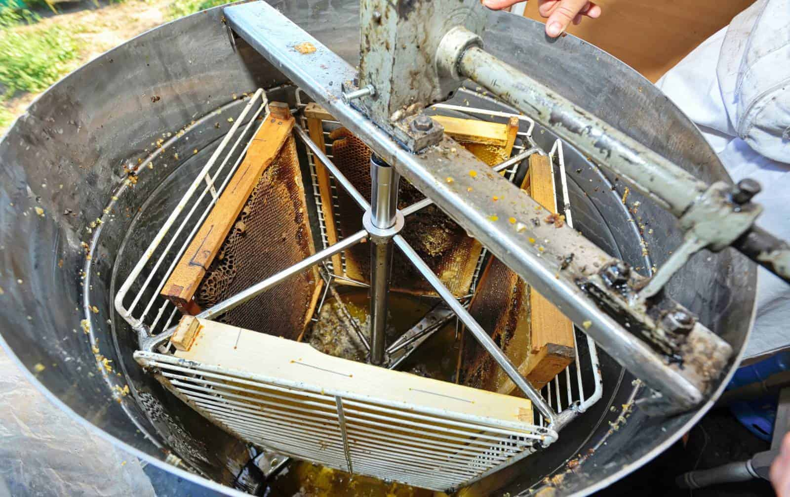 cleaning honey extracting equipment.