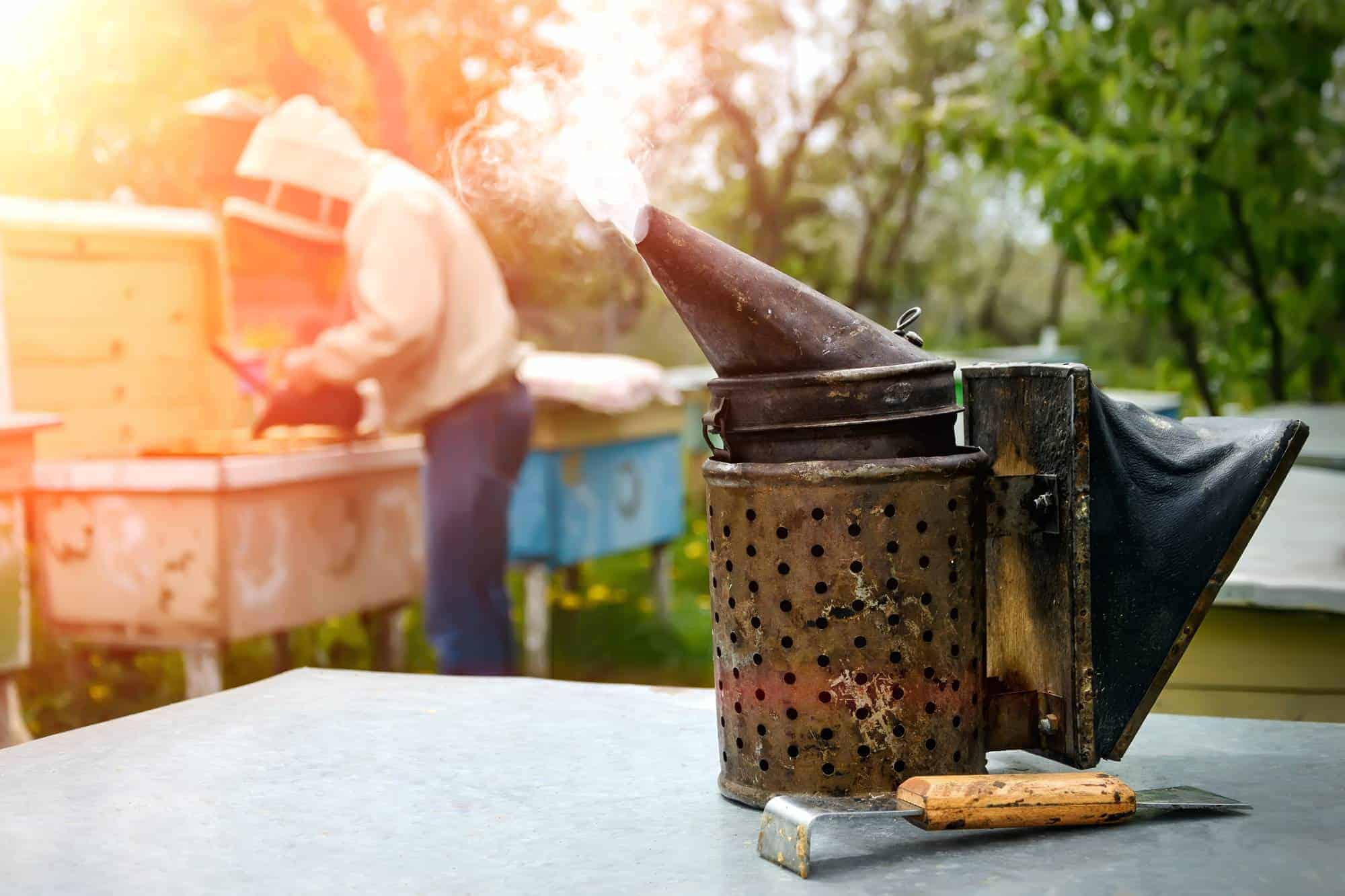 A Guide to Cleaning Your Beekeeping Equipment